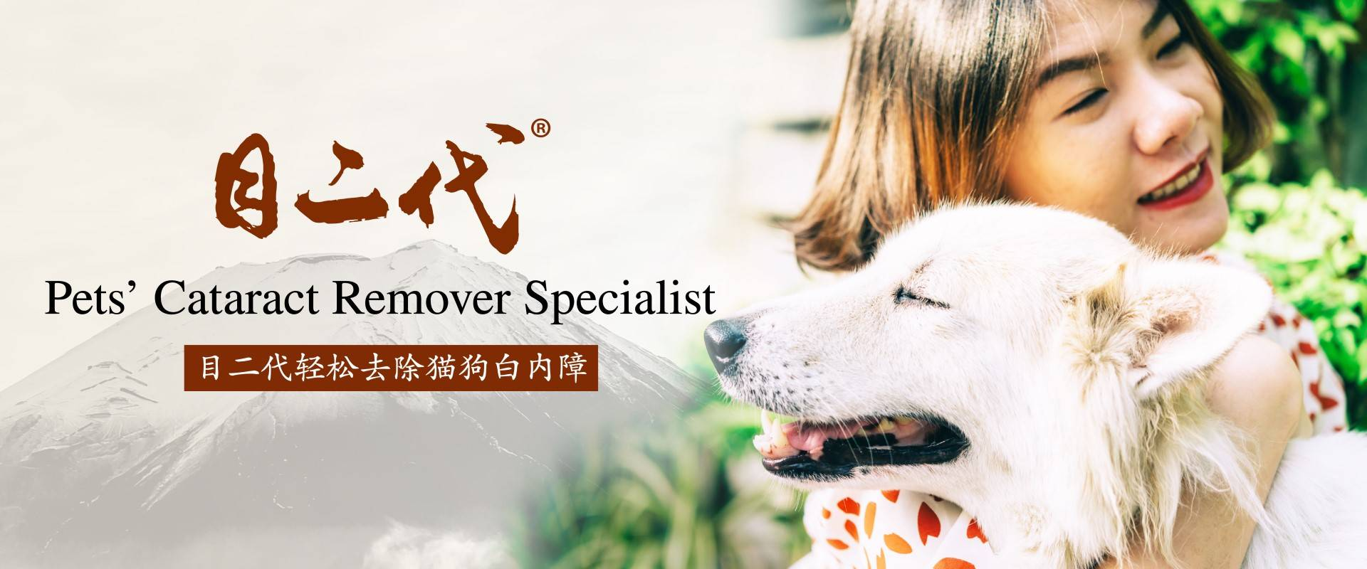 Pets' Cataract Remover Specialist